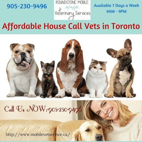 Affordable House Call Vets in Toronto | Mobile Vet Service provides complete range of Veterinarian services at-home | Scoop.it