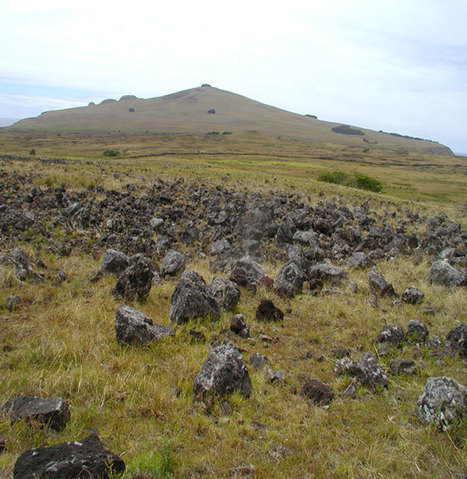 Prehistoric Easter Islanders Didn't Experience a Simple Collapse, Say Researchers | Popular Archaeology | Kiosque du monde : Amériques | Scoop.it