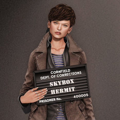 Skybox Hermit | Second Life Freebies by Kkarl and May | Scoop.it