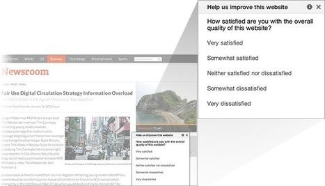 Free Website Satisfaction Surveys from Google | Google NonProfit Grants Help | Scoop.it