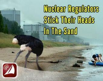 Nuclear Regulators Stick Their Heads In The Sand | Fairewinds Energy Education | Los mapas del #15M | Scoop.it