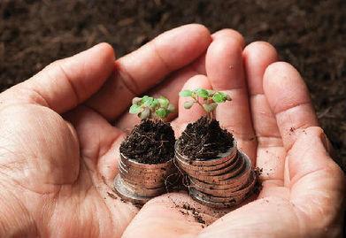 Ces entreprises qui ont fait du développement durable un atout | Participation, collaboratif, développement durable | Scoop.it