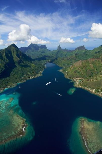 Tim McKenna's photos | TAHITI Le Mag | Scoop.it