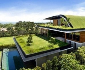 Environment Friendly Roofing to Impact City Life | Lauri's Environment Scope | Scoop.it