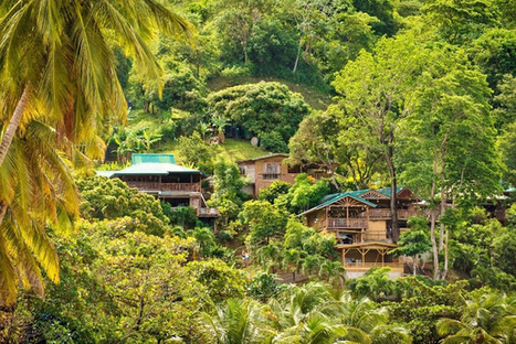 Affordable and Eco Friendly in Tobago | Caribbean Island Travel | Scoop.it