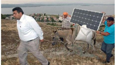 Comment accéder à Internet en gardant ses moutons? | Renewables Energy | Scoop.it