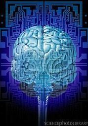 » Brain Chemistry Altered by Early Life Experience, Part 1 - World of Psychology | psychology | Scoop.it