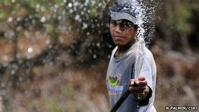 How rainwater harvesting is helping Nicaraguan farmers | HaLaPic | Rainwater Harvesting : world tour | Scoop.it