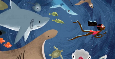 The Cutest Video About Shark Murder I've Ever Seen | Creative Change | Scoop.it