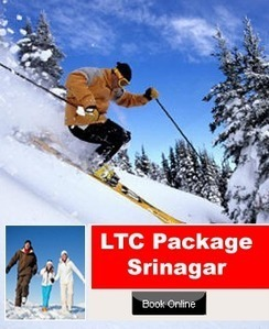 LTC Package,LTC Tour Packages,LTC Package Srinagar,LTC Packages, | Holiday Packages | Scoop.it