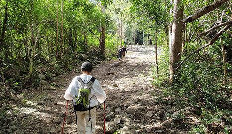 L'écotourisme : Voyager responsable et durable - Le Defi Media Group | EPE tourisme durable | Scoop.it