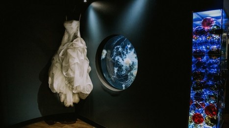 Considering Dress Donation | How to Recycle Your Dress After your Wedding | GSquared Weddings | Weddings | Scoop.it