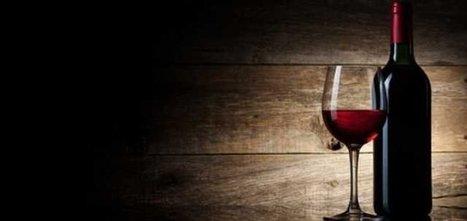 Conso : Le vin, elixir de santé | Wine, Life & Geek - entre Bordeaux & Toulouse | Scoop.it