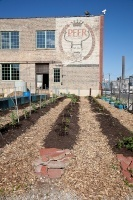 Chicago Warehouse Becomes Net-Zero Urban Farm | Sustainable Urban Agriculture | Scoop.it
