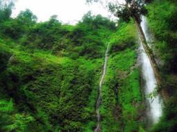 8 Tempat Wisata Jombang yang Unik dan Menarik | wisata indonesia | Scoop.it