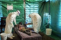 Ebola: Stakeholders Call For Improved Sanitation, Hygiene In Schools - Leadership Newspapers | soap and handwashing | Scoop.it