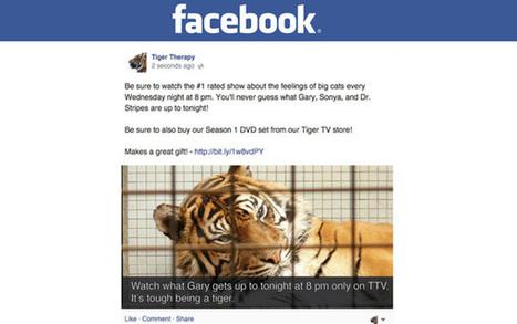 #Facebook va diminuer la portée des publications trop promotionnelles en 2015 ! | Social media | Scoop.it