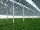 India: greenhouses with solar panels - Financial Times (blog) | Solar Style News | Scoop.it