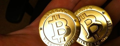 WordPress.com criticizes PayPal, credit card firms for restrictions, now lets you pay with Bitcoin | BitCoin | Scoop.it