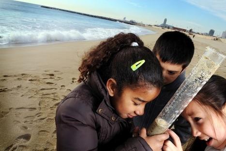 Aliances per a l'èxit educatiu: com desenvolupar un projecte Magnet? | Agenda i novetats. CRP Sarrià-Sant Gervasi | Scoop.it