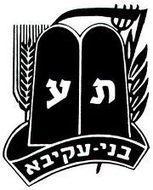 תנועת בני עקיבא בישראל | בני עקיבא | Scoop.it