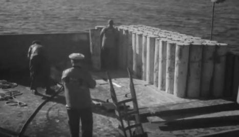 Armes chimiques sous la mer | great buzzness | Scoop.it