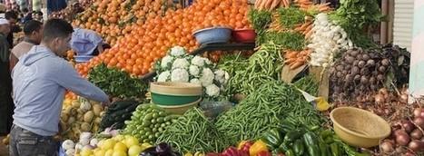 56 fruits et légumes pour le mois d'octobre   ExeptionnElles Mag'   Food and news   Scoop.it