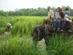 Murti Forest a Rememberable Trip to Dooars | Dooars Ecoviillege | Scoop.it