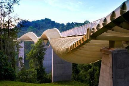 Henderson Waves: A Pedestrian Bridge Envisioned for Singapore | green streets | Scoop.it