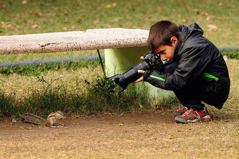 The Photography of Carlos Perez Naval: the 9-Year-Old Wildlife Photographer of the Year | C ART news | Scoop.it