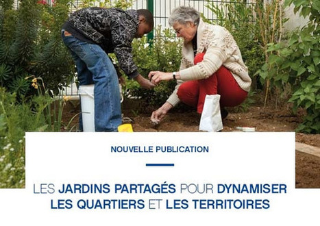 Les jardins PARTAGÉS pour dynamiser les quartiers et les territoires | actions de concertation citoyenne | Scoop.it