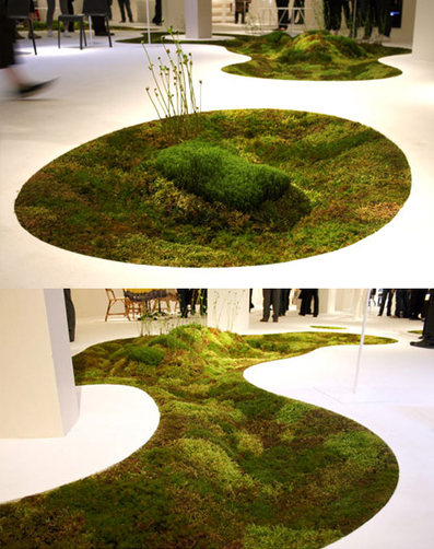 All-Natural Moss Carpet You Can Grow Right in Your Home | plant and design | Scoop.it