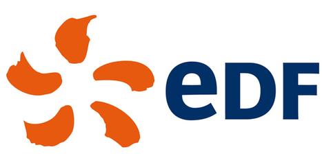 EDF | Mars 2013 - Actuellement le réseau Interp'elles regroupe plus de 1300 membres répartis dans toutes les directions d'EDF, tous les métiers et toutes les régions. | Interp'elles | Scoop.it