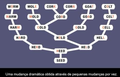 O Bê-A-Bá da Evolução | marked for sharing | Scoop.it