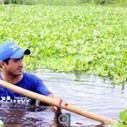 Jardins aquatiques : plus besoin de terre pour cultiver les légumes | Les initiatives du changement | Scoop.it