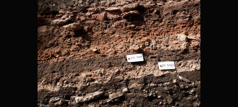 Excavations at the Place du Château in Strasbourg : Past Horizons Archaeology | Heathers Scoop | Scoop.it
