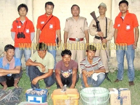 Poachers nabbed, animals rescued   Wildlife Trafficking: Who Does it? Allows it?   Scoop.it