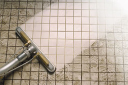 Reputable carpet cleaning company - EZ Fort Myers Carpet Cleaning   EZ Fort Myers Carpet Cleaning   Scoop.it