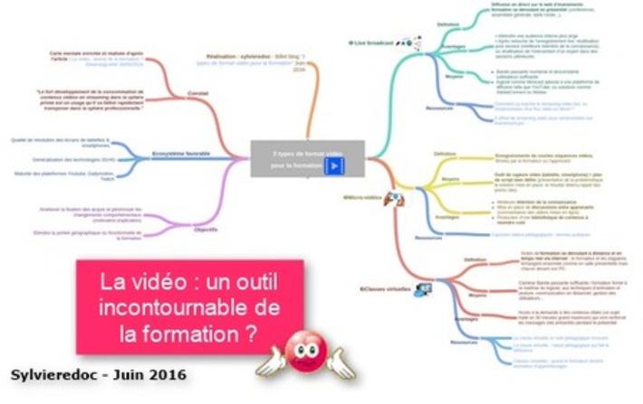 3 types de format vidéo pour la formation | TIC et TICE mais... en français | Scoop.it