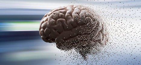 5 Predictions for Artificial Intelligence in 2016 | Post-Sapiens, les êtres technologiques | Scoop.it