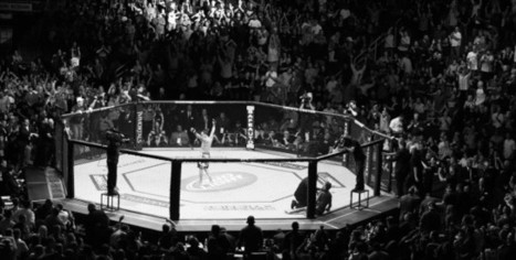 MMA Nouvelles – UFC: Behind The Scenes Tribute (Vidéo) | Mma | Scoop.it