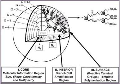 DENDRIMERS FOR NOVEL DRUG DELIVERY: AN OVERVIEW ... | NanoBioPharmaceuticals | Scoop.it