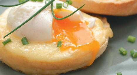 Des œufs Bénédicte au Saint-nectaire. | thevoiceofcheese | Scoop.it