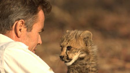 Man runs and naps with cheetahs, makes documentary about it - Mother Nature Network | Cats Rule the World | Scoop.it