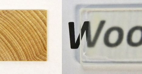 Scientists made see-through wood that's stronger than glass | UnSpy - For Liberty! | Scoop.it