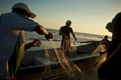 Well-funded program tries new approach to tackle overfishing in developing world - Washington Post   Fisheries and coastal communities   Scoop.it
