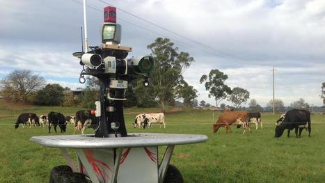 En Australie, des troupeaux de vaches seront gardés par des robots | Post-Sapiens, les êtres technologiques | Scoop.it