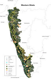Indian Botanists: 90% of the Natural Landscape of Western Ghats are Ecologically Sensitive | AnnBot | Scoop.it