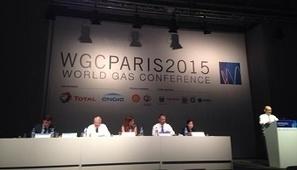 Les défis gaziers africains débattus à Paris | S'emplir du monde... | Scoop.it