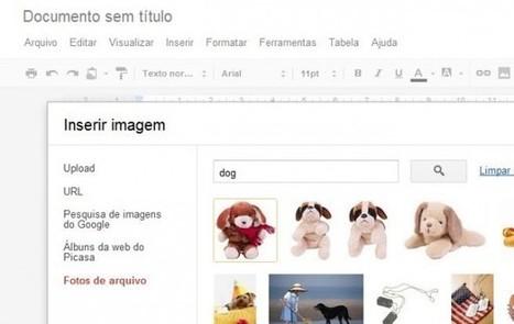 Buscador de imágenes libres en Google Docs | EDUDIARI 2.0 DE jluisbloc | Scoop.it